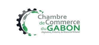 Pr sentation du secteur priv gabonais - Chambre du commerce chambery ...